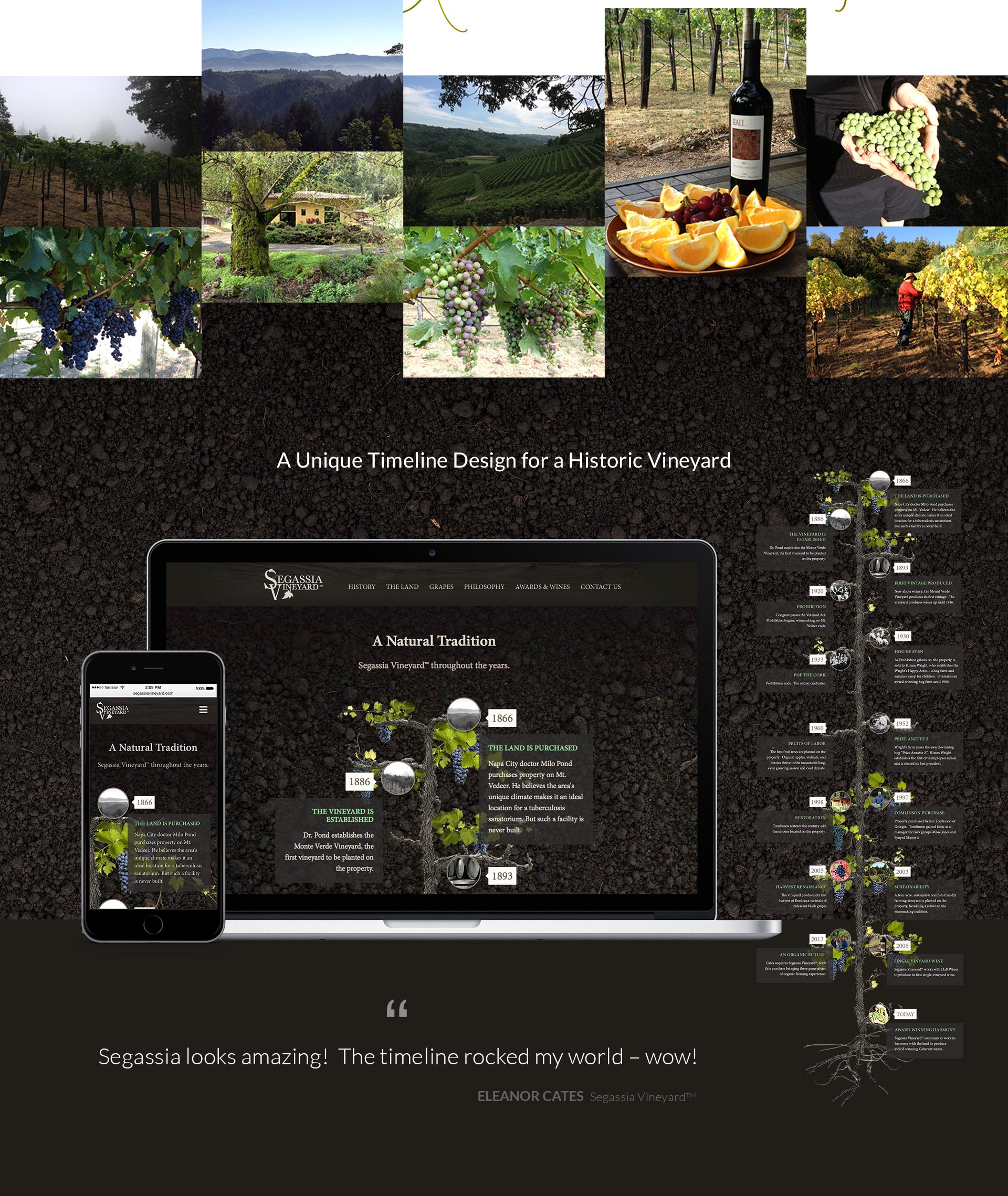 Segassia-Vineyard-Timeline-Design